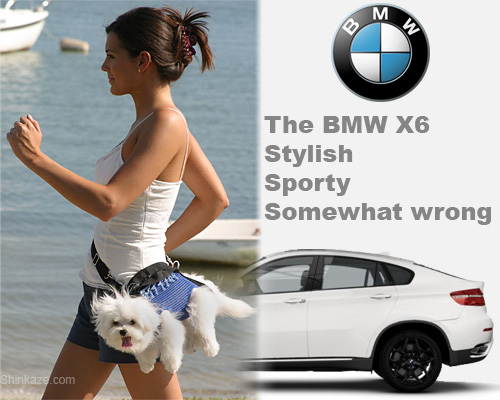 BMW X6, A Sporty Dog Purse